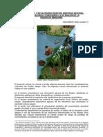 CONSTRUYENDO Y REVALORANDO NUESTRA IDENTIDAD REGIONAL ANDINO-AMAZONICA