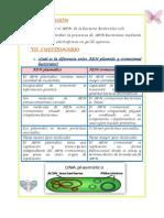 Cuestionariode Bm 5-6