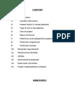 Business Plan.doc 2003 (1)