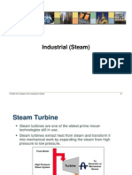 060216_Industrial_Steam.pdf