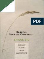 Sf Ioan de Kronstadt-Spicul Viu