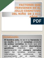 Factores Que Intervienen en El Desarrollo Cognitivo