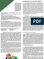 Panfleto Questão indígena.docx