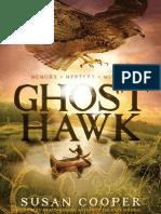 Ghost Hawk Excerpt