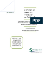 48197153 Estudio Mercado TURISMO Calakmul
