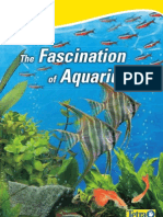 The Fascination of Aquariums