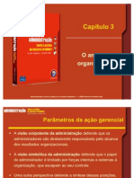 44549884-Administracao-Capitulo03
