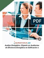 Auditor Energetico (1)