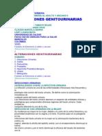 Alteraciones Genitourinaria Varis Temas 11