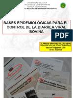 Diarrea Viral Bovina. Bases Epidemiologicas para su Control.