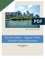 Bow River - Harvard Graduate Research Paper