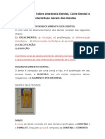 3 Aula - Generalidades Sobre Anatomia Dental