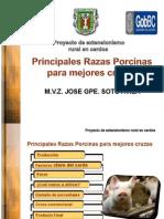 3.- Extensionismo( Mejores Razas Para Mejores Cruzas-12-57gaby
