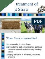 Urea Treatment of Wheat Straw
