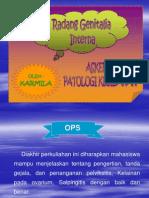 PP Radang Genetalia