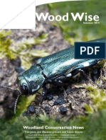 Wood Wise - Tree Pests & Diseases - Summer 2013