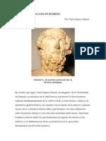 Homero, Analisis e Interpretaciones