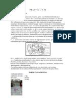 PRACTICA N 08.docx