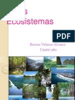 cuartoecosistemas-120930164326-phpapp01