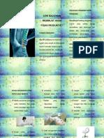 LBP - Leaflet