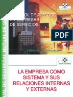Control de Riesgos Empresa Servicios