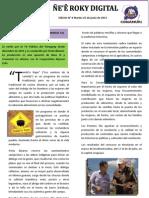 Boletín Ñe'e Roky Digital N° 6 - Junio 2013