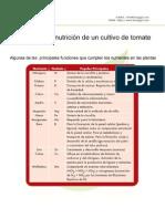 Tomate Curvas Informacion de Nutricion de Un Cultivo de Tomate