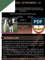 Fisiología veterinaria Ii