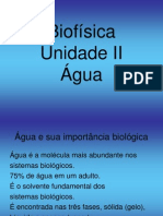 Biofísica da Ã-gua- Unidade II
