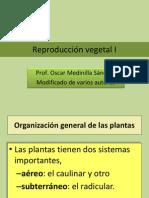 Reproducción vegetal I