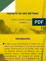 Hidrato de Gas Metano Exposicion