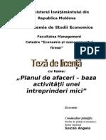 Plan de Afaceri - Baza Activitatii Unei Intreprinderi Mici