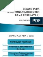 Materi Bidang PSDK