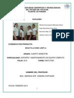 2 P1SD1-EVID_1_ECO_F13-J13_52E