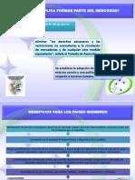 Diapositivas de Internacional II