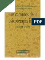 De SANTIAGO HERRERO, F. Javier Los Caminos de La Psicoterapia