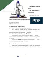 Derecho Penal y Procesal Penal1
