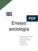 Ensayo Sociologia