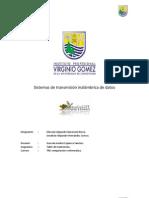 Informe Comunicacion Inalambrica de Datos