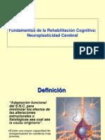 Neuroplasticidad Cerebral