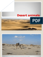 Desert Animals by Ridha Hussain