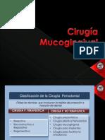 Cirugia Mucogingival y Sutura