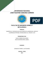 Modelo Informe APA
