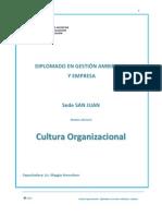 Manual La Cultura Organizacional - Modulo Adicional Diplomado en Gestion Ambiental y Empresa 2012