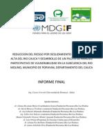 INFORME FINAL Ingenieria Naturalistica Manejo de Riesgos