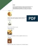 Jardinería - Como Plantar Bulbosas