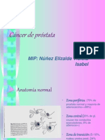 35396830 Cancer de Prostata