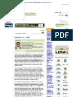 A africanização e os novos rumos da apicultura brasileira - Portal Dia de Campo