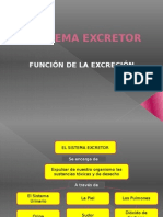 sistemaexcretrordiapositiva-110707151110-phpapp01