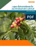 Sistemas de Produccion de Cafe en Colombia Capitulo 3 Factores Productividad